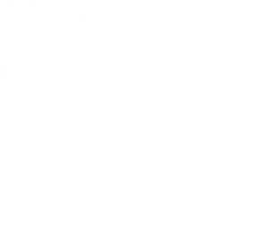DWP_logo_WIT_transparant